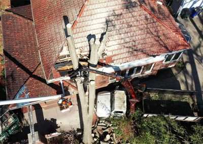 Tree Removal From Tile Roof